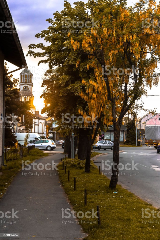 Street Spring Sunset View royalty-free stock photo