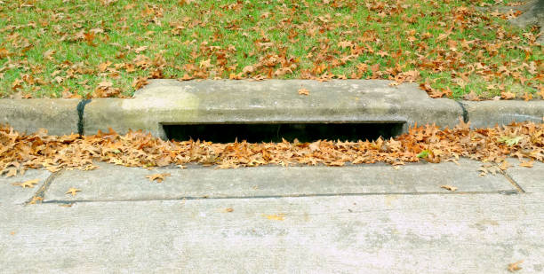 Street Storm Drain with Autumn Leaves stock photo