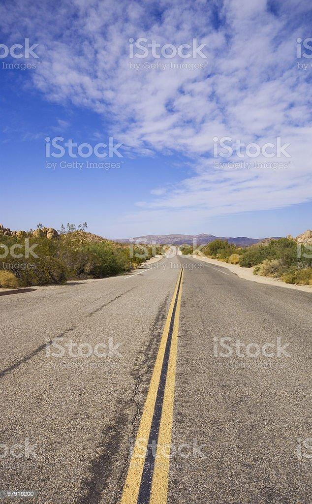 Street through the Joshua Tree NP royalty-free stock photo
