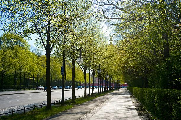 ベルリン siegessaeule street - グローサーシュテルン広場 ストックフォトと画像