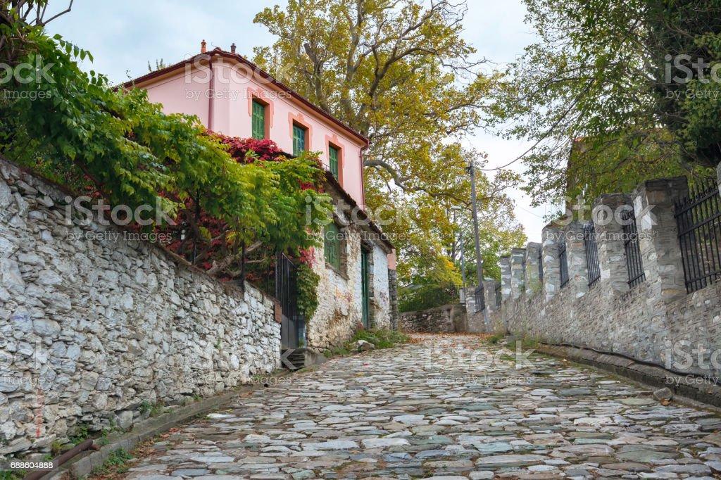 Street view at Portaria village of Pelion, Greece stock photo