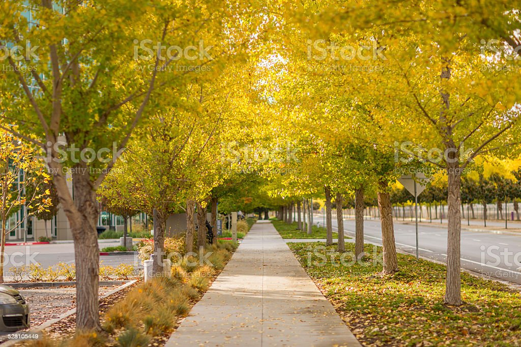 Street view at Sunnyvale stock photo