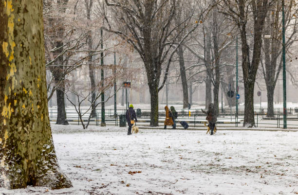 Street view during a snowfall in a public park in Turin (Piedmont, Italy). stock photo