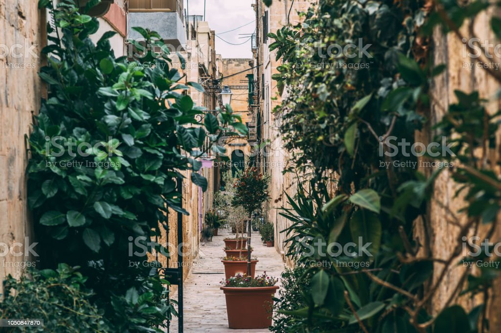 Street view in Birgu, Malta stock photo