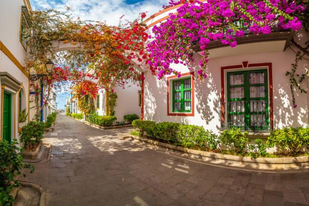 Street with flowers in Puerto de Mogan