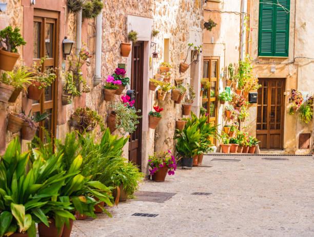 Rue avec des plantes en pots typiques à Valldemossa, Espagne - Photo