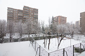 Streets and trees covered with snow in Madrid, Spain due to the snowstorm called Filomena. More than half a meter of snow with impassable roads.