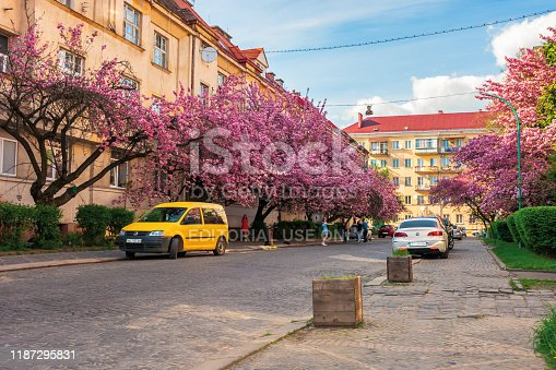 825525754istockphoto streets of small town in cherry blossom 1187295831