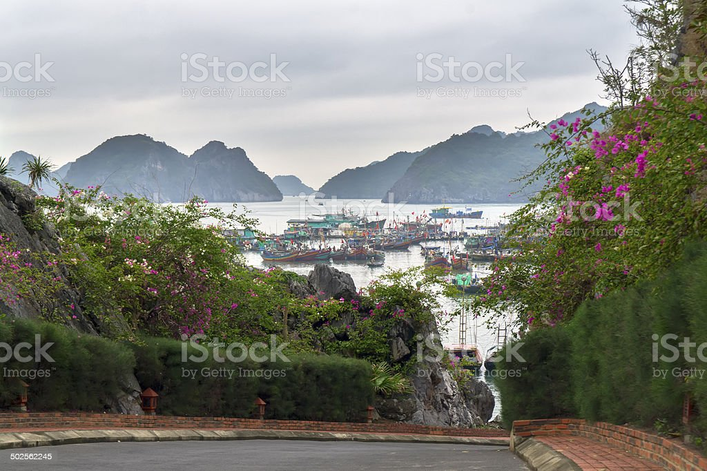Streets on Cat Ba Island. stock photo