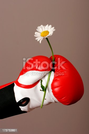 Hand in boxing glove is holding delicate flower.