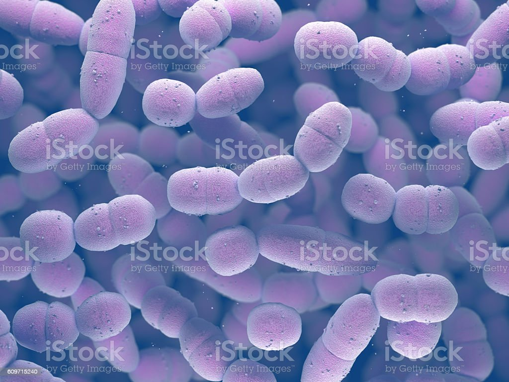 Streptococcus Pneumoniae Bacteria stock photo