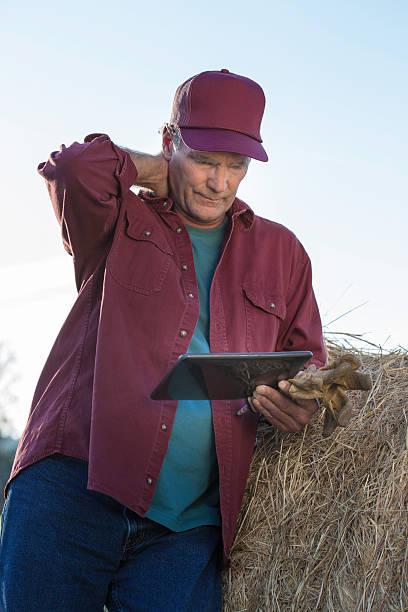 stressed farmer using tablet - balpress bildbanksfoton och bilder
