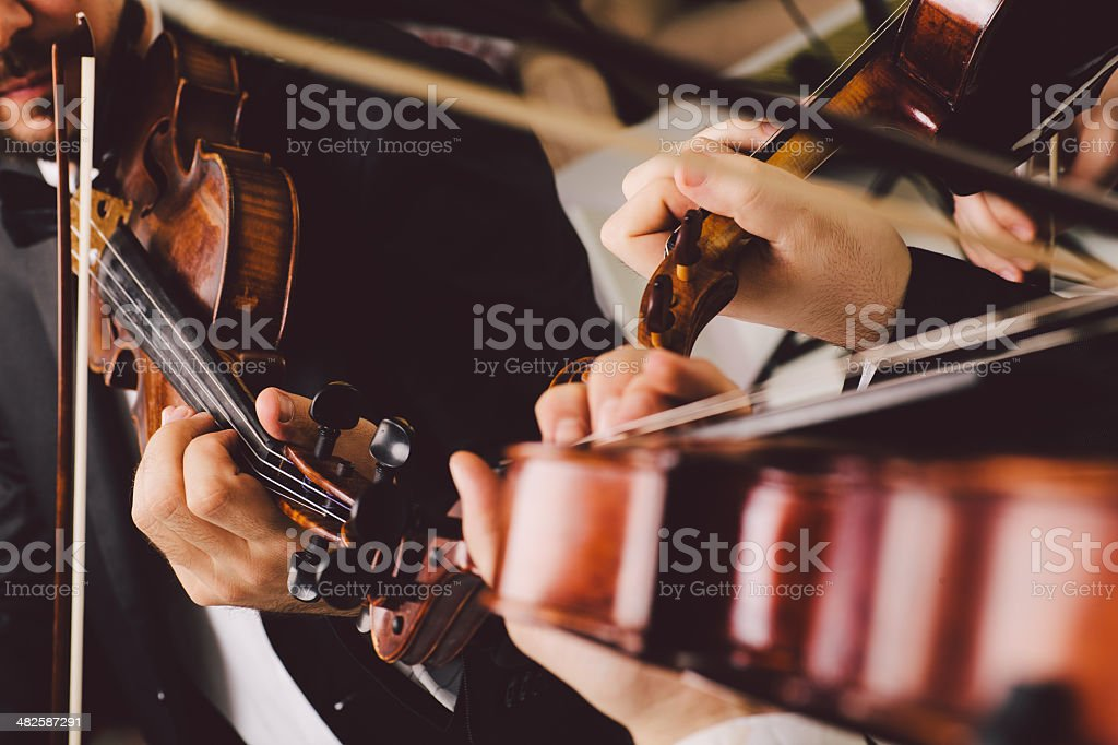 String instrument musicians. stock photo