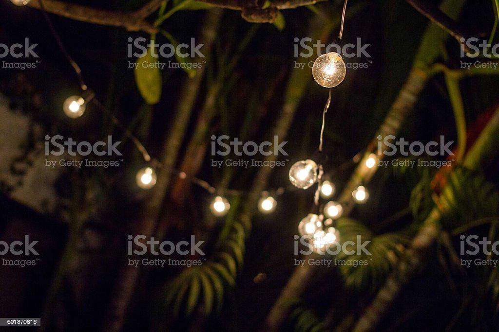 String lights on tree stock photo