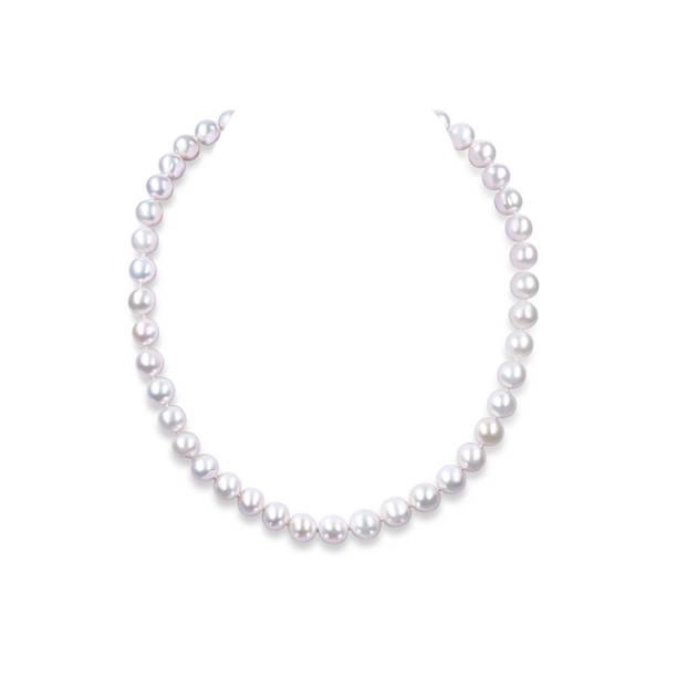 string of pearls on a white background. - ожерелье стоковые фото и изображения