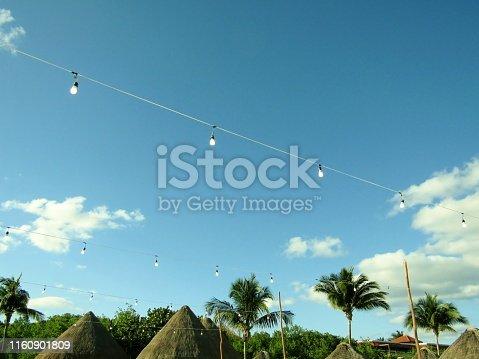 String of vintage light bulbs in Mexican tropical beach garden