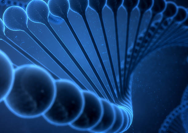 DNA String on a blue background. - foto de stock