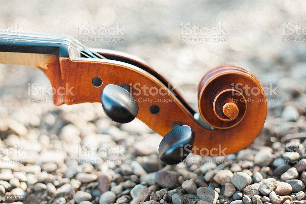 Stringed Instrument Detail stock photo