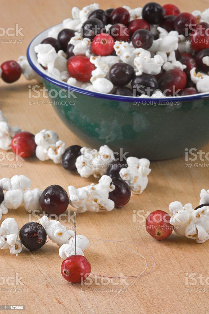 Stringing Popcorn & Cranberry Strings stock photo