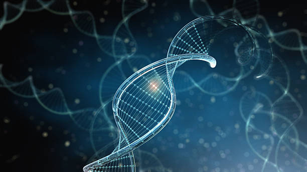 Image result for image dna