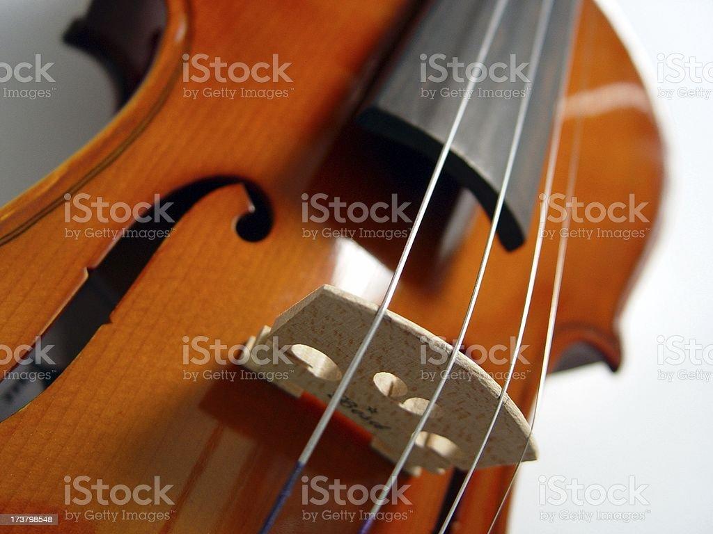 Strings  Violin (series) royalty-free stock photo