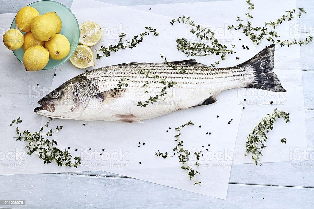 Striped Bass Dinner stock photo