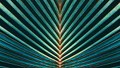 Striped of palm leaf, Abstract texture background, Vintage tone process