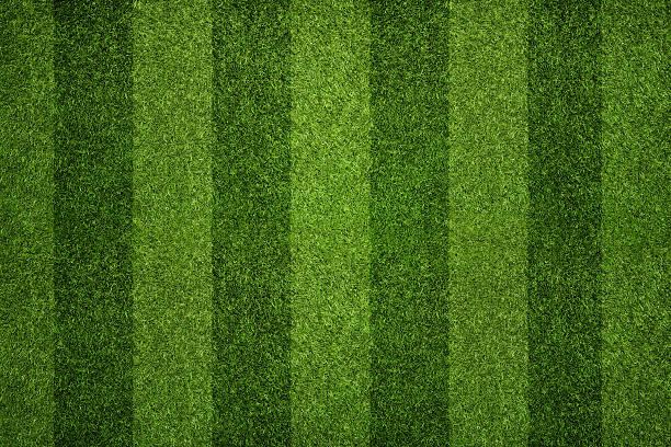 Striped soccer field stock photo