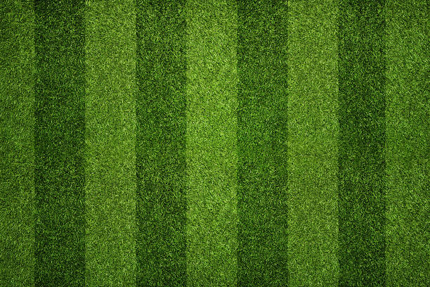 Striped soccer field Empty striped soccer field texture, background with copy space turf stock pictures, royalty-free photos & images
