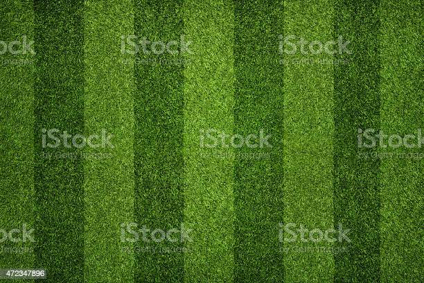 Empty striped soccer field texture, background with copy space