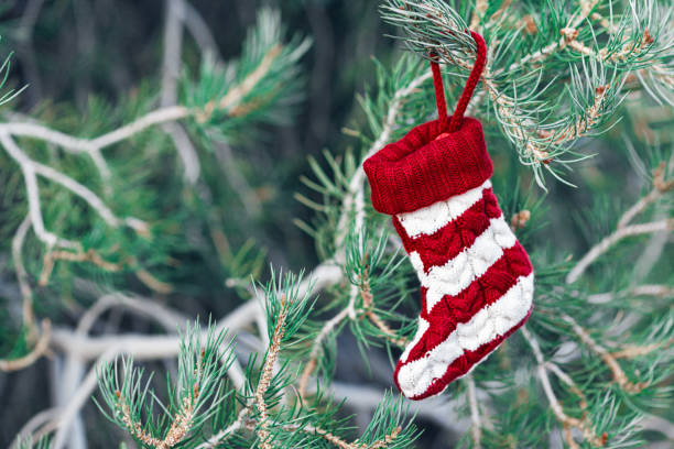 Striped sock hanging on Christmas tree with copy space on the left stock photo