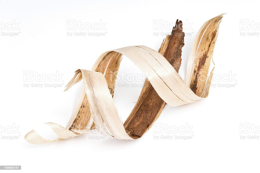 Strips of curled bark pieces on white stock photo