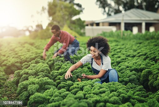 Shot of young farmers tending to their crops
