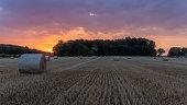 Der Sonnenuntergang ist eine wundervolle Gelegenheit für uns, all die großartigen Dinge zu schätzen, die uns die Sonne gibt!