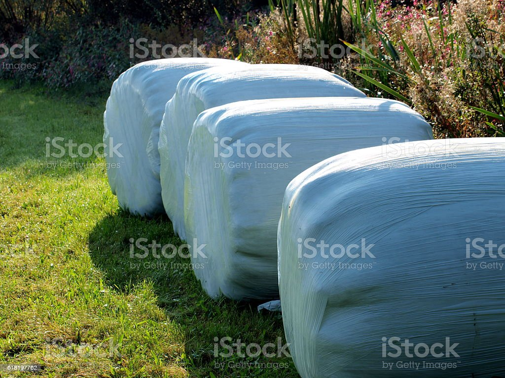 Strohballen verpackt stock photo