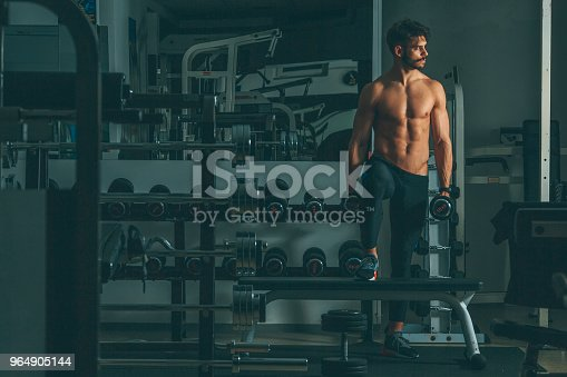 Strong And Handsome Young Man Doing Exercise With Dumbbells Stock Photo & More Pictures of Adult