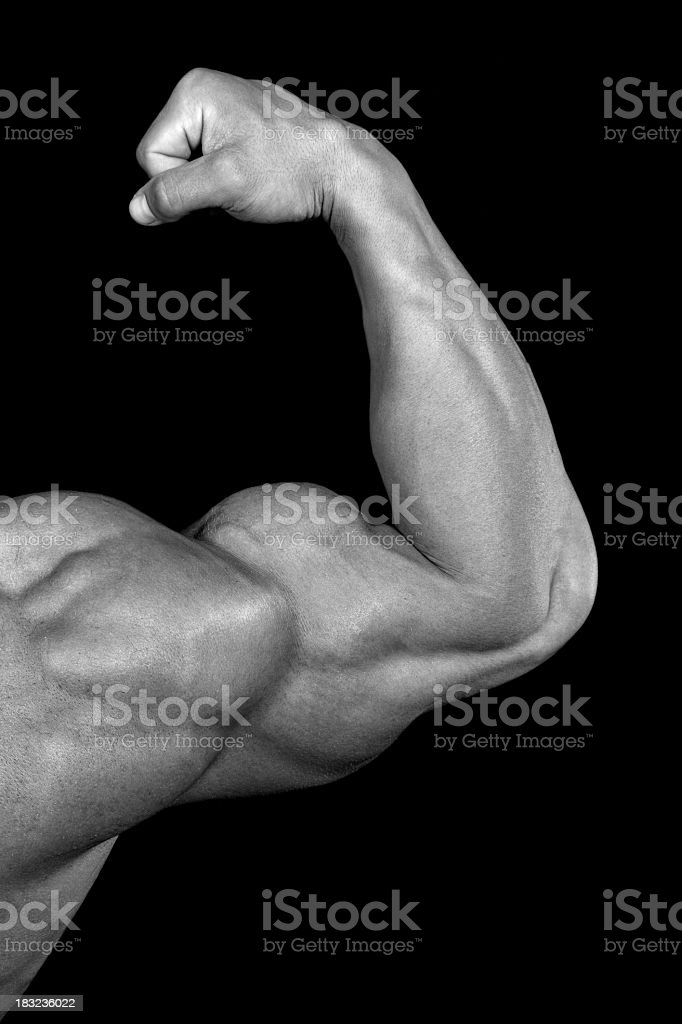 Strong biceps royalty-free stock photo