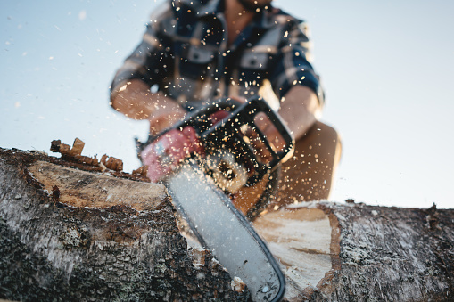 istock Strong lumberjack wearing plaid shirt and hat use chainsaw in sawmill. Sawdust fly apart 1042932564