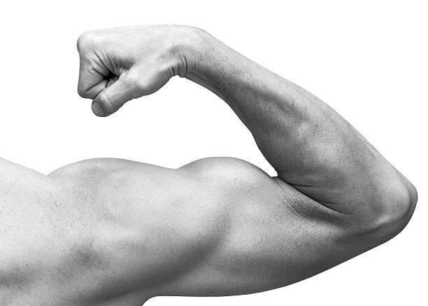 fuerte macho biceps brazo de muestra. close-up en blanco y negro - macho fotografías e imágenes de stock