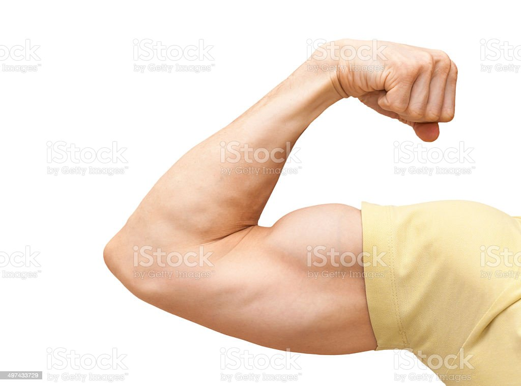 Fuerte macho biceps brazo de muestra.  Close-up Aislado en blanco photo - foto de stock