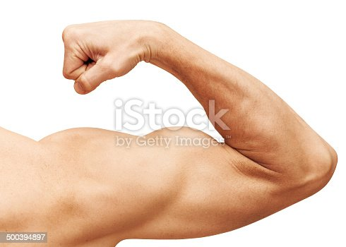istock Strong male arm shows biceps. Close-up photo isolated on white 500394897