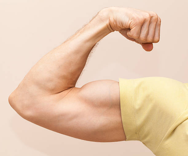 Strong male arm shows biceps. Close-up photo stock photo