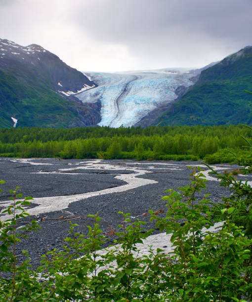 Strong Melting Glacier. Melting water. In the background view of the Exit Glacier showing its blue ice and white snow. Portrait, fine art. In the Kenai Fjords National Park, Alaska. July 27, 2018 stock photo