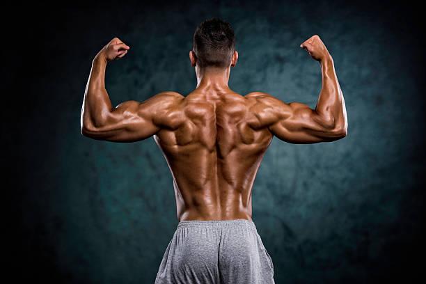 strong muscular back - 筋肉 ストックフォトと画像