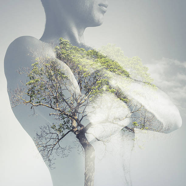Strong sporty young man torso combined with green tree stock photo