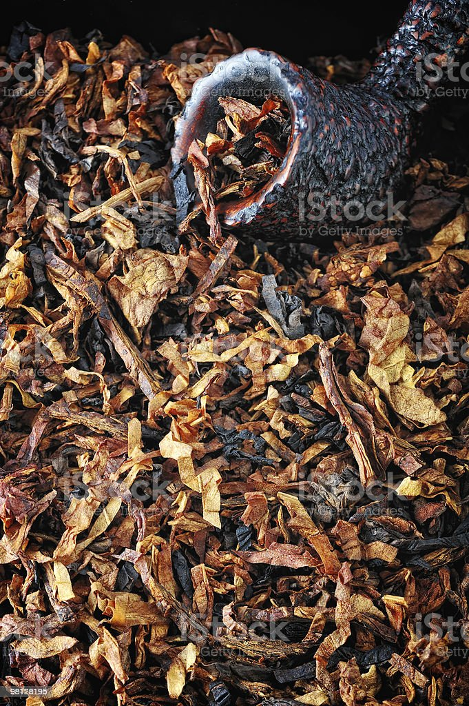 Strong Tobacco royalty-free stock photo
