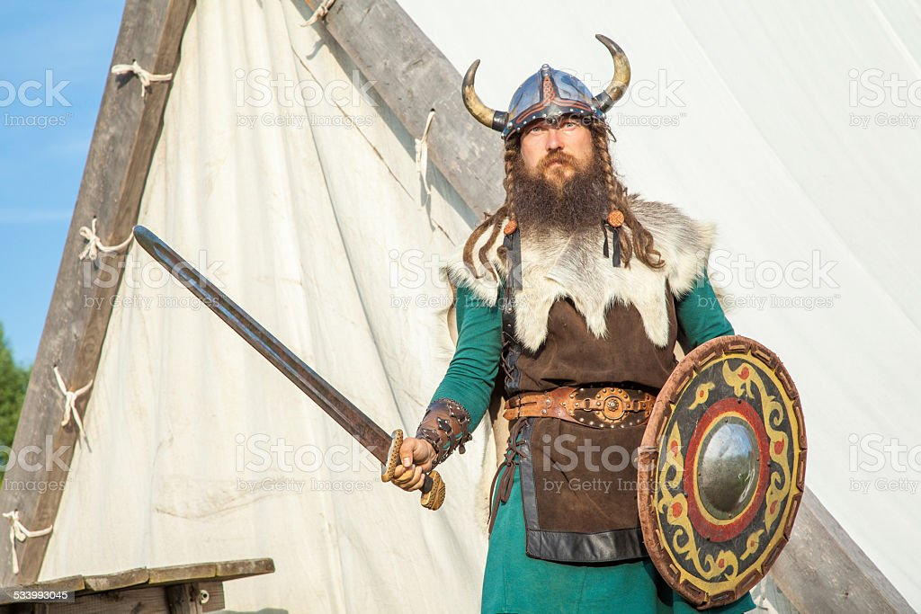 Strong viking is defending near his territory stock photo