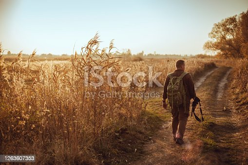 istock Strong young hunter with red beard holding his gun and walking along the dirt road under blue sky 1263607353