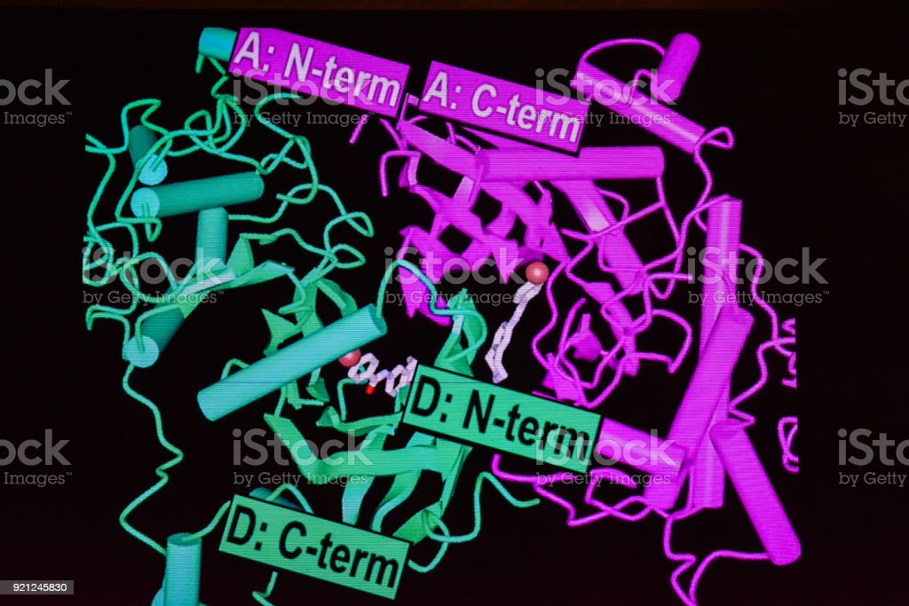 Structural model of a protein molecule. stock photo