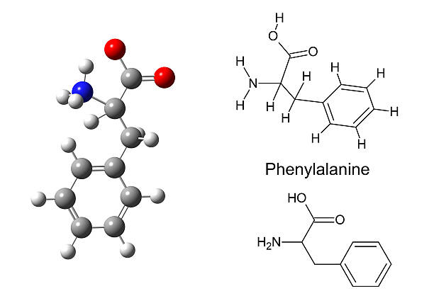 structural model of phenylalanine molecule - cyclic stock pictures, royalty-free photos & images